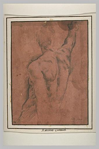 Demi-figure d'homme nu, de dos, pointant le bras droit en avant