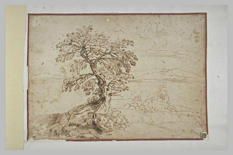 Paysage avec un arbre sur un talus, et des montagnes dans le lointain