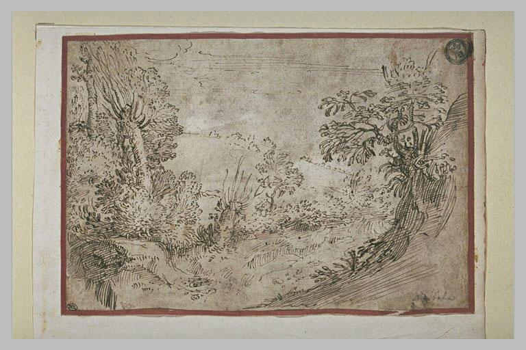 Paysage avec des bosquets d'arbres et d'arbustes