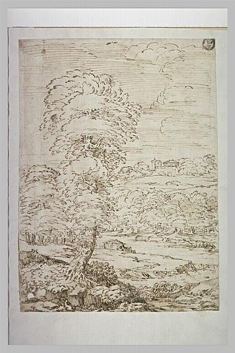Paysage boisé, traversé d'une rivière et dominé par un arbre élevé