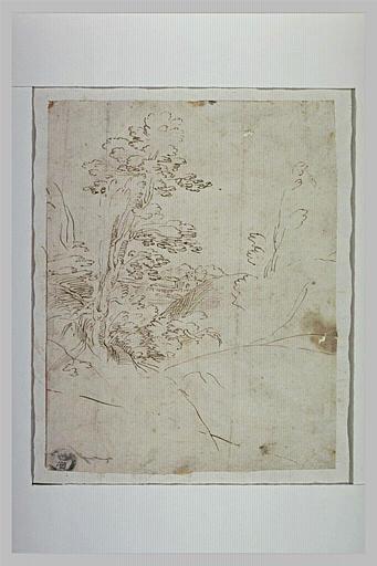 Paysage avec un arbre sur un petit tertre