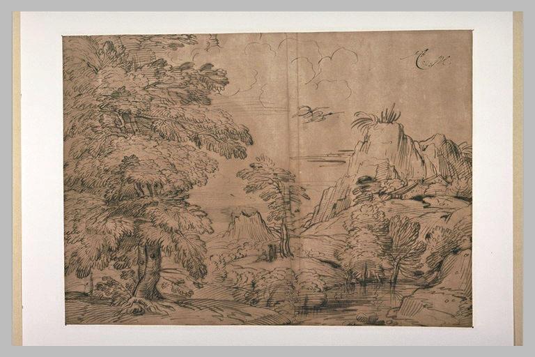 Paysage boisé, traversé d'un ruisseau, avec de hautes falaises