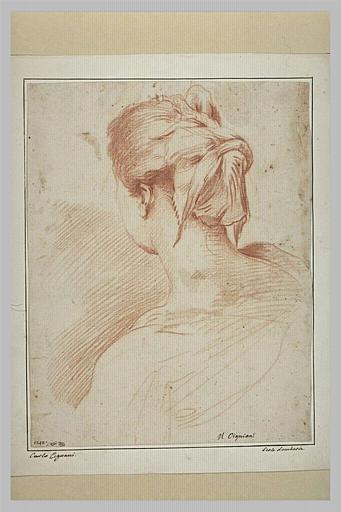 Une tête de femme vue de dos
