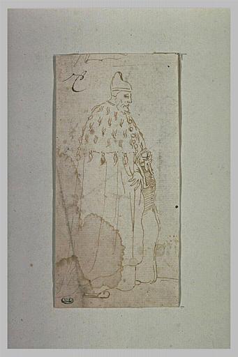 Un doge debout, de profil, tourné à gauche