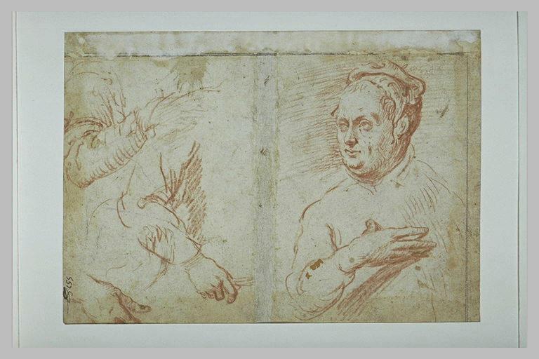 Figure en buste, la main sur la poitrine, deux bras et une main