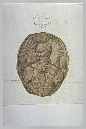 Buste d'homme chauve, barbu, regardant vers la gauche