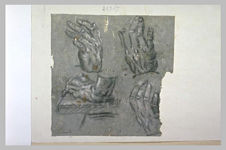 Quatre études de main, dans diverses positions