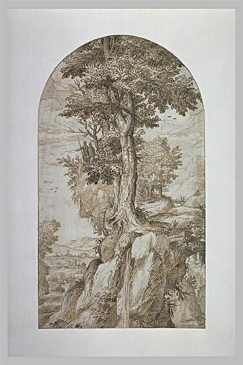 Paysage montagneux avec un gros arbre et une plaine dans le lointain
