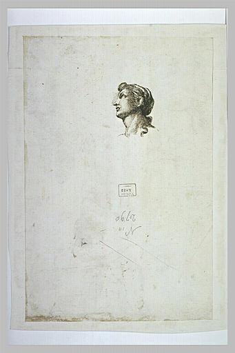 Tête de femme, de profil, regardant vers le haut : une des Grâces