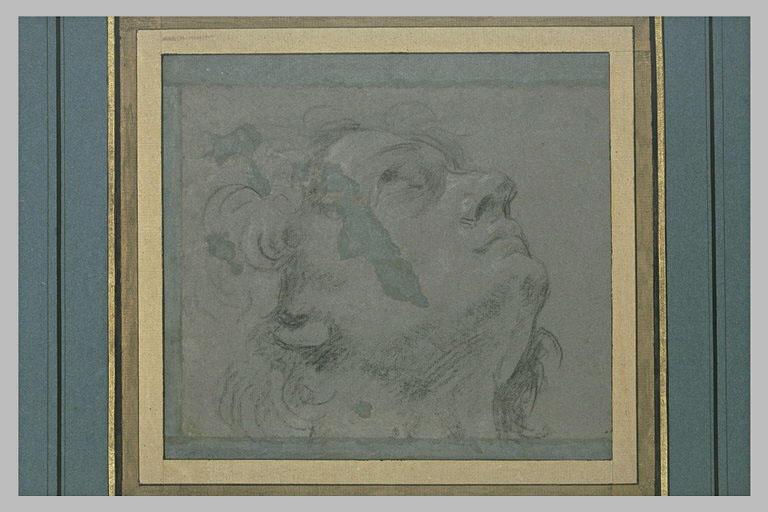 Tête d'homme tourné vers la droite, vue de profil et regardant le ciel