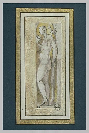 Femme nue de profil : étude pour l'Eve de la Steccata