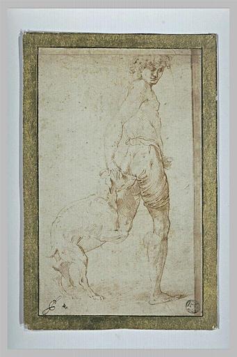 Jeune garçon repoussant un chien qui lui monte sur la jambe
