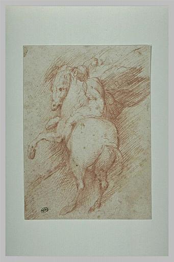 Un homme nu, sur un cheval qui se cabre, vu de dos