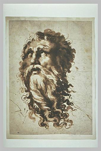 Tête d'homme barbu, regardant vers le haut : saint Jean l'Evangéliste