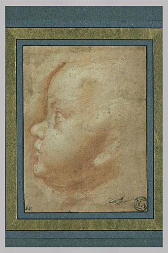 Une tête d'enfant, vu de profil vers la gauche
