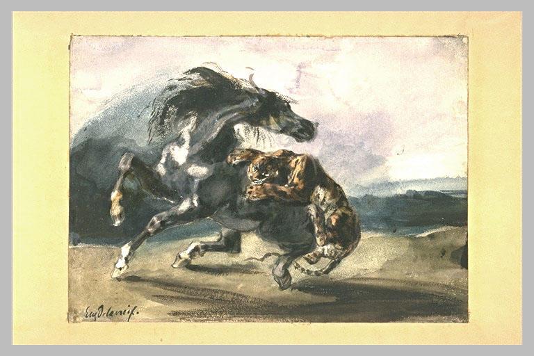 Tigre attaquant un cheval sauvage_0