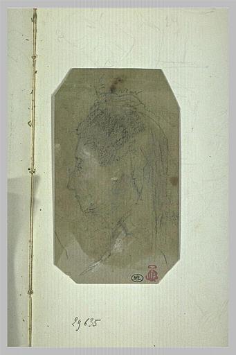 Tête de femme, le nez fortement busqué, les cheveux surmontés d'un diadème_0