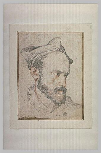 Portrait d'un cardinal