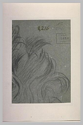 Fragment d'une tête : mèches de cheveux, oreille