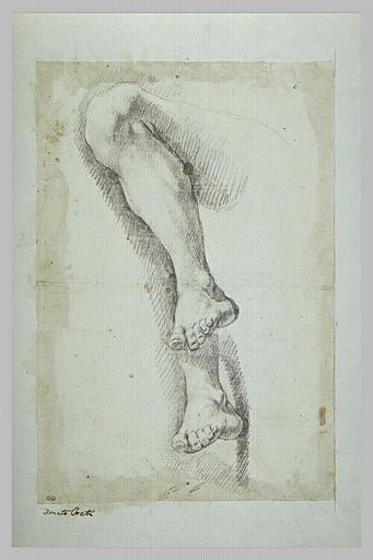 Deux études de jambe gauche