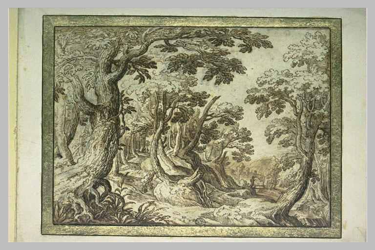Paysage boisé avec un sentier et un ruisseau