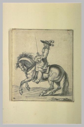 Etude d'un cavalier