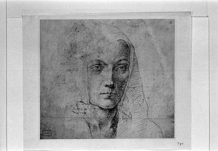 Etude d'une tête de jeune femme, vue de trois quarts