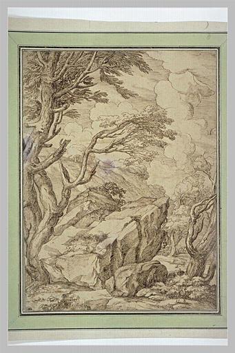 Paysage de rochers et d'arbres_0