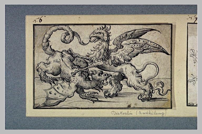 Deux dragons ailés combattant