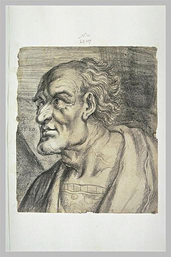 Tête d'homme âgé, de profil à gauche