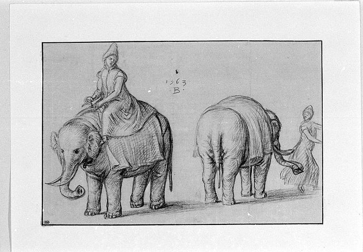 Deux études d'éléphants et de leurs gardiens