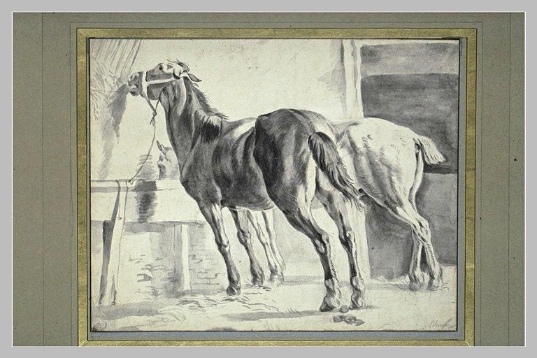 Deux chevaux à l'écurie