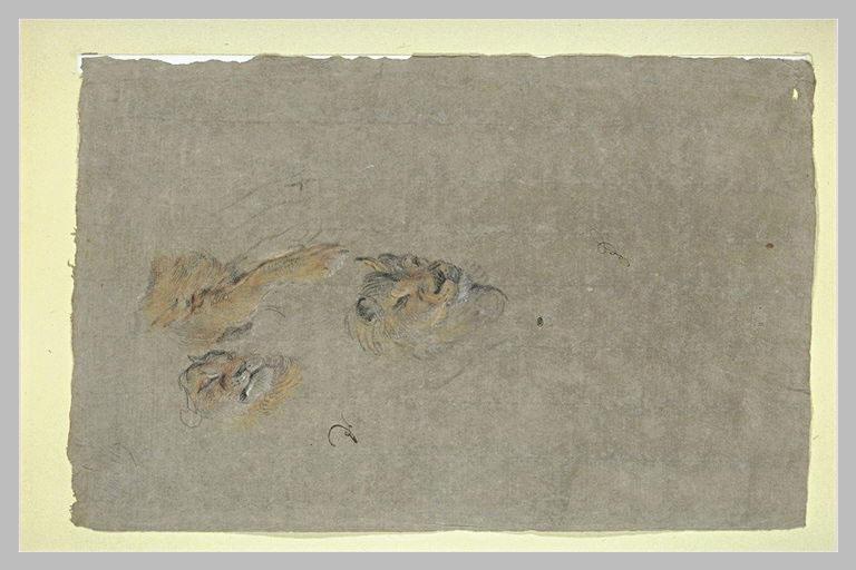 Deux têtes de lion et une patte