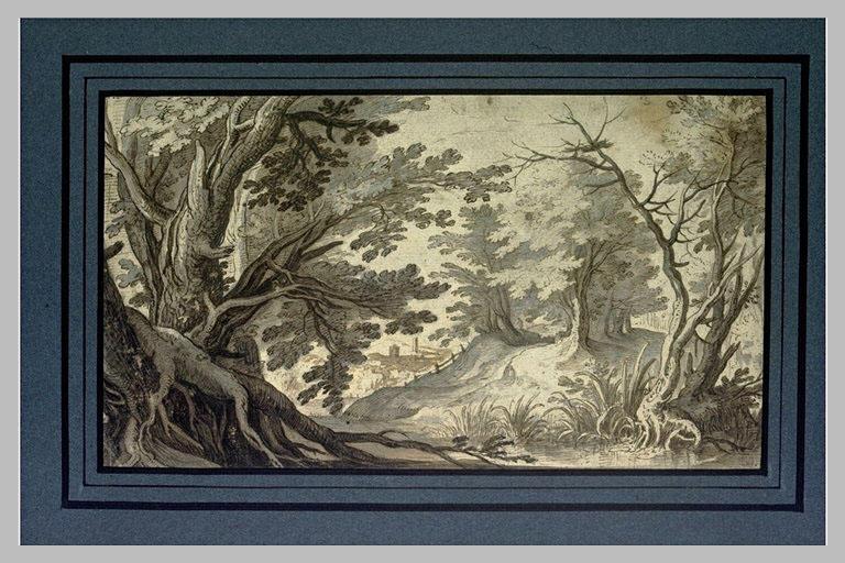 Paysage boisé, avec une rivière