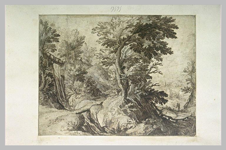 Flanc droit d'une colline boisée avec un sentier et un torrent_0