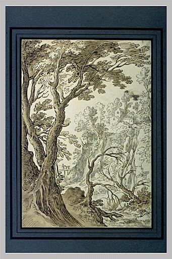 Cascade tombant d'une colline dans une rivière bordée d'arbres