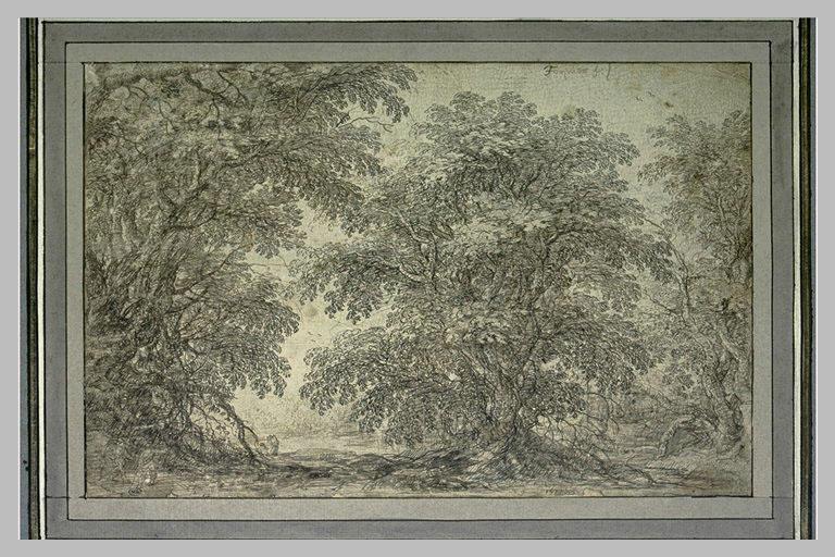 Paysage boisé, avec une petite rivière à droite