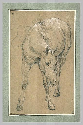 LEMOYNE François : Etude d'un cheval