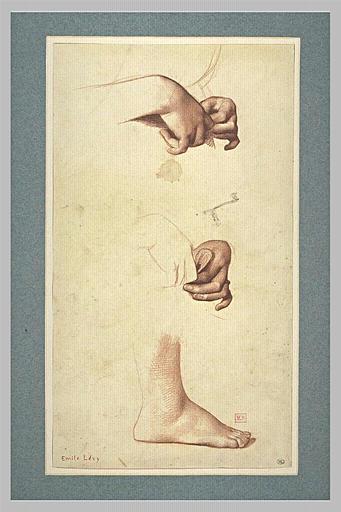 Deux études de mains tenant une petite branche, et étude de pied droit_0