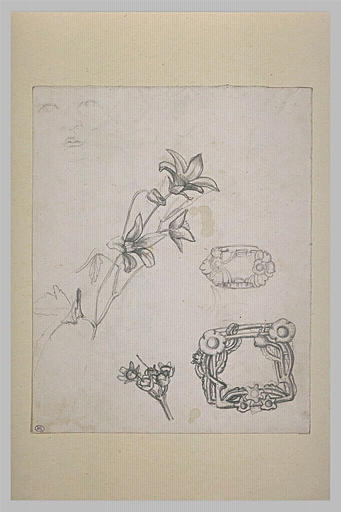 Etudes de fleurs, de deux boucles de ceintures et croquis d'une tête