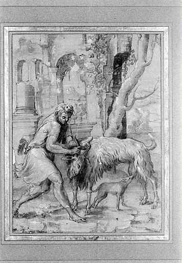 Un homme tenant une chèvre par les cornes afin qu'un chien puisse la téter