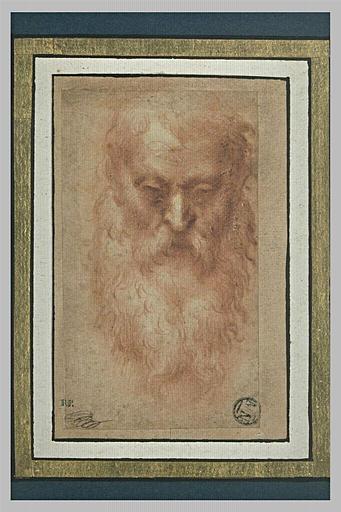 Tête de vieillard barbu, de face, penchée en avant