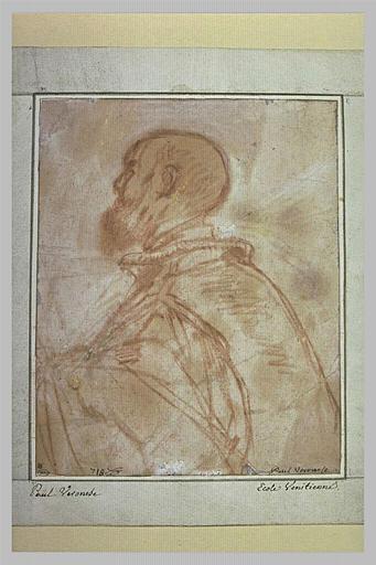 Buste d'homme chauve et barbu, tourné vers la gauche