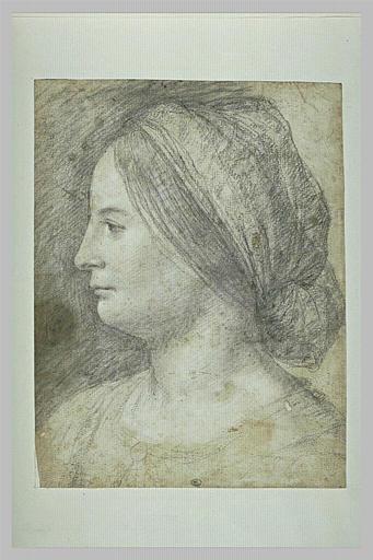 Tête de femme, coiffée d'un bandeau, vue de profil_0