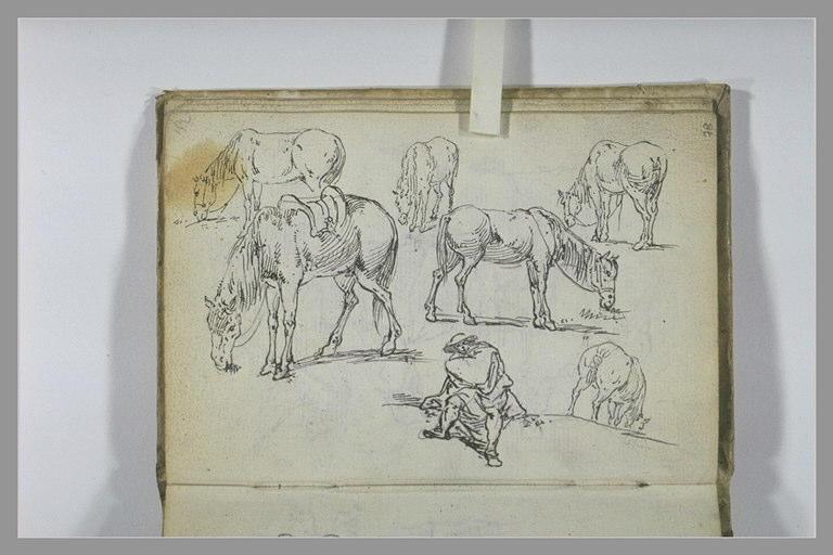 Etudes d'un paysan et de chevaux