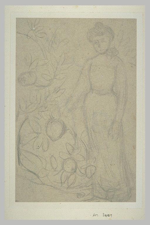Jeune femme près d'un arbre fruitier