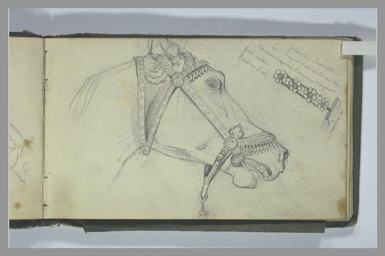 Une tête de cheval ; une chainette
