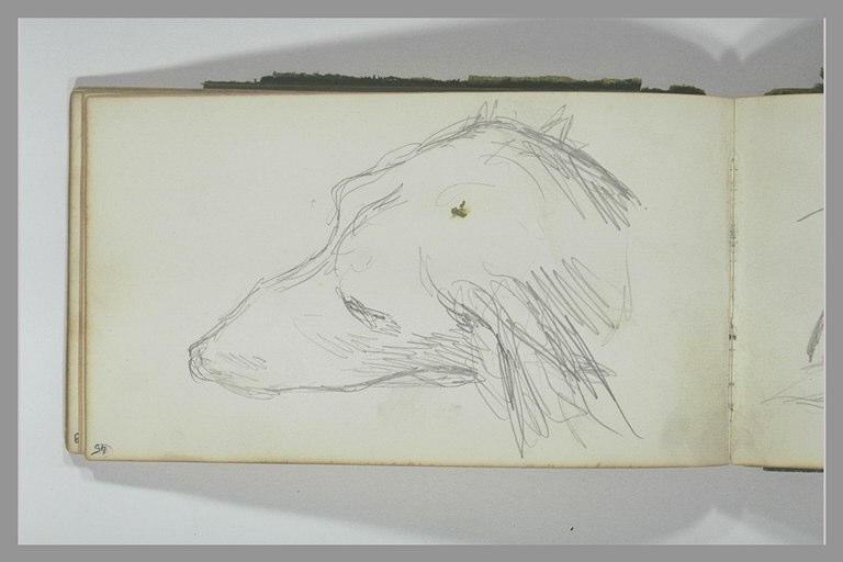 YVON Adolphe : Tête de chien