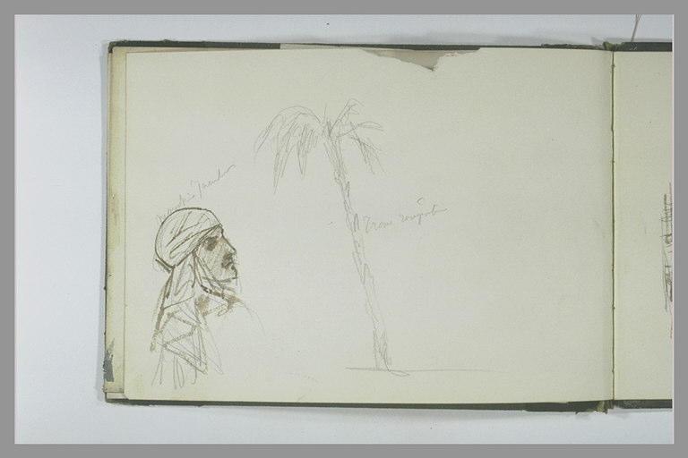 Tête d'Oriental, de profil vers la droite ; palmier