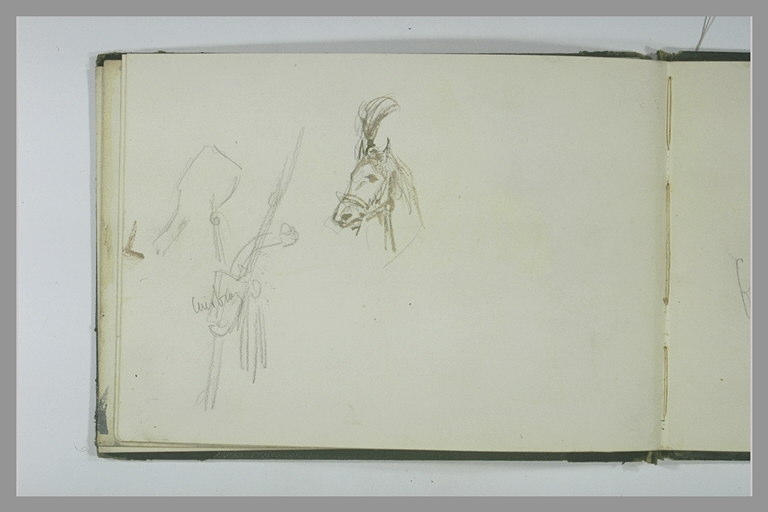 Tête de cheval harnaché ; harnais (?)